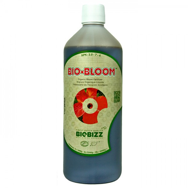 BB BLOOM 1L