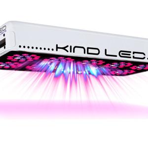 kind_l600_on